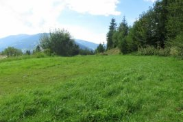 Real Estate in 5760  Saalfelden: Saalfelden: Sunny Building Plot in Unspoiled Panoramic Position - Picture
