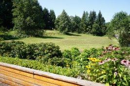 Immobilie in 4865 -Nußdorf am Attersee : NÄHE NUßDORF AM ATTERSEE – ZWEITWOHNSITZ: Gemütliches Landhaus auf 5.546 qm Baugrund direkt am Grünland!