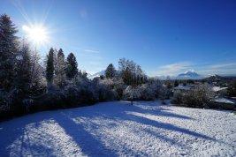 Immobilie in 5026  Salzburg: RARITÄT IN AIGEN: 4.687 qm großes Traumgrundstück in absoluter Toplage! - Bild